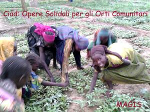 Ciad Orti Comunitari Donne orti 2 con Titoli