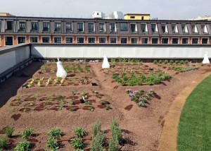 Fuorisalone:'SuperOrtoPiù', orto urbano sui tetti di Milano